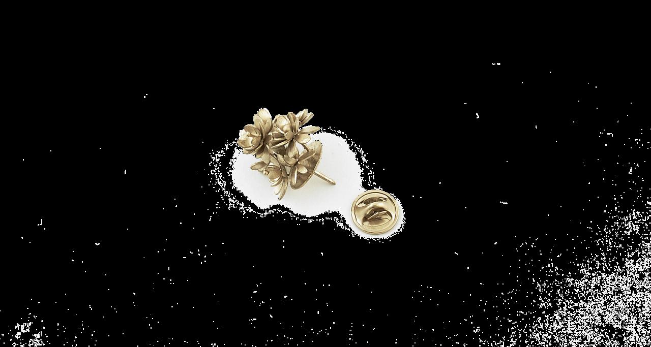 MySen Lotus